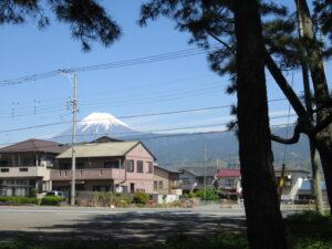 千本松原から富士山